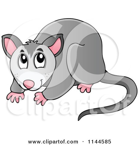 Possum clipart #5, Download drawings