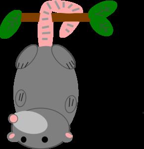Possum svg #17, Download drawings