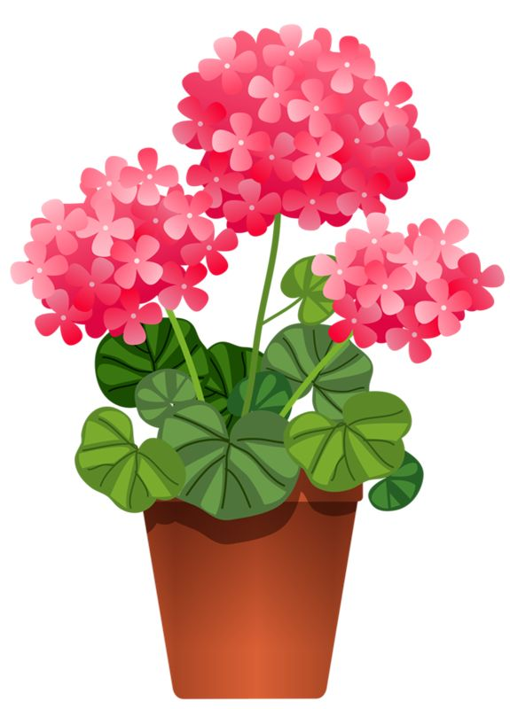 Pot Plant clipart #15, Download drawings