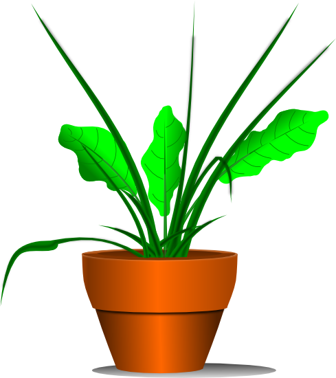 Pot Plant clipart #3, Download drawings