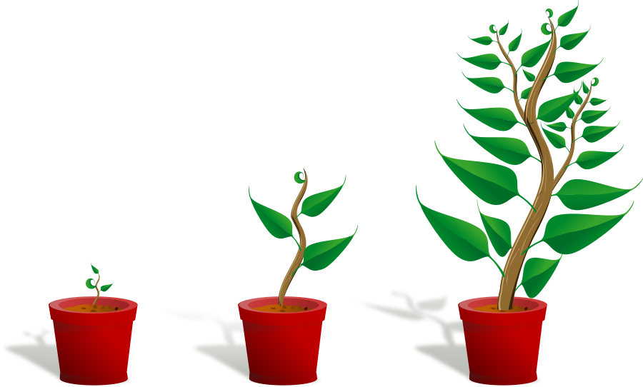 Pot Plant clipart #9, Download drawings