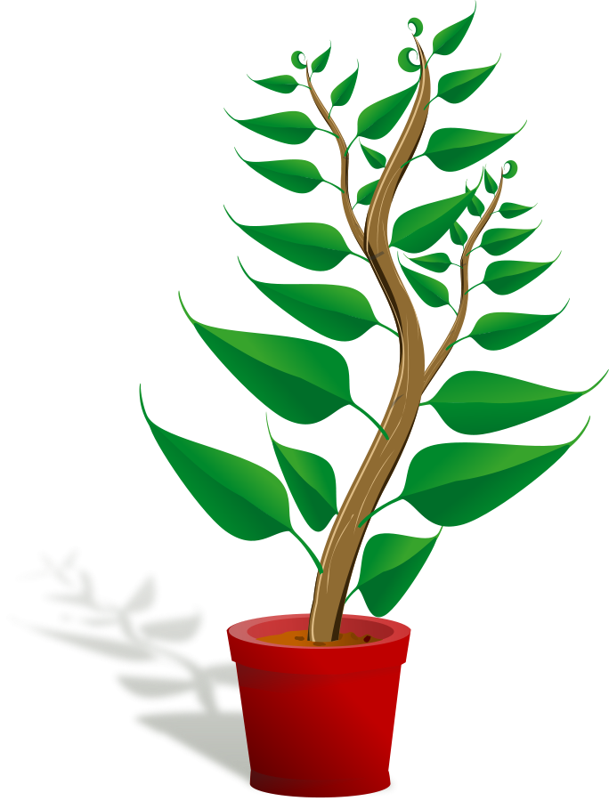 Pot Plant clipart #8, Download drawings
