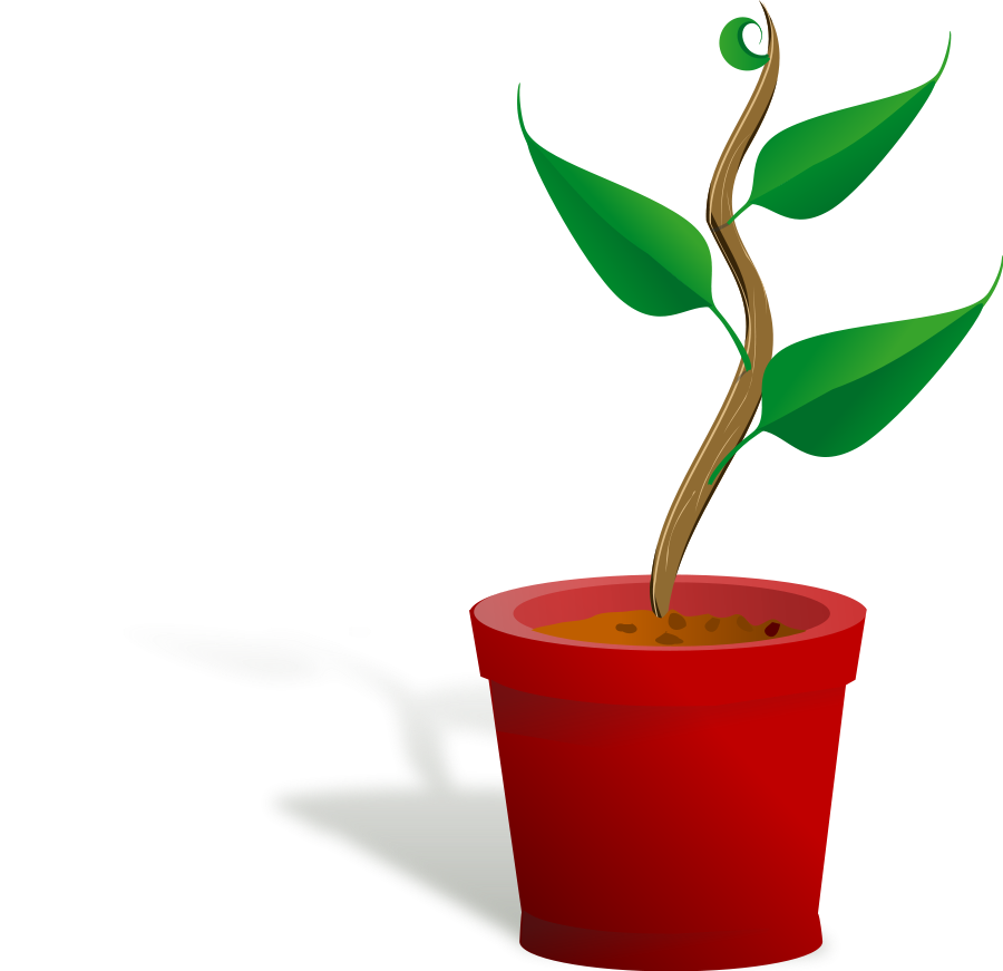 Pot Plant clipart #16, Download drawings
