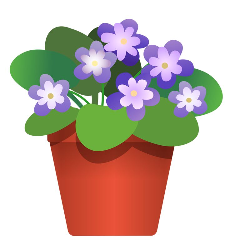 Pot Plant clipart #18, Download drawings