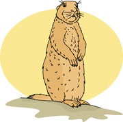 Prairie Dog clipart #8, Download drawings