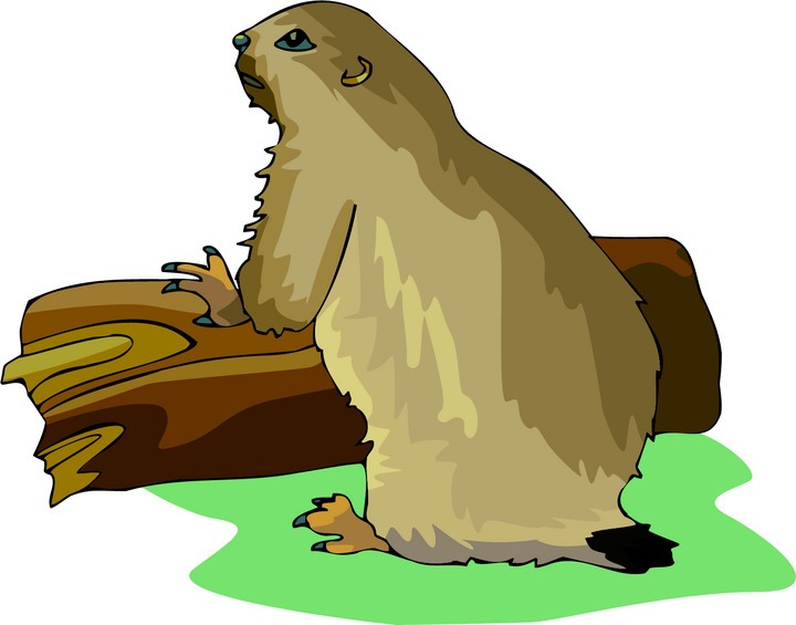 Prairie Dog clipart #17, Download drawings