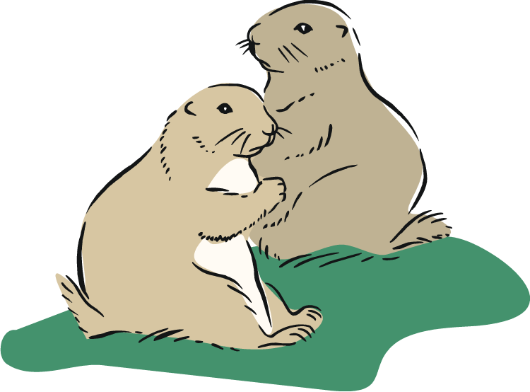 Prairie Dog clipart #18, Download drawings