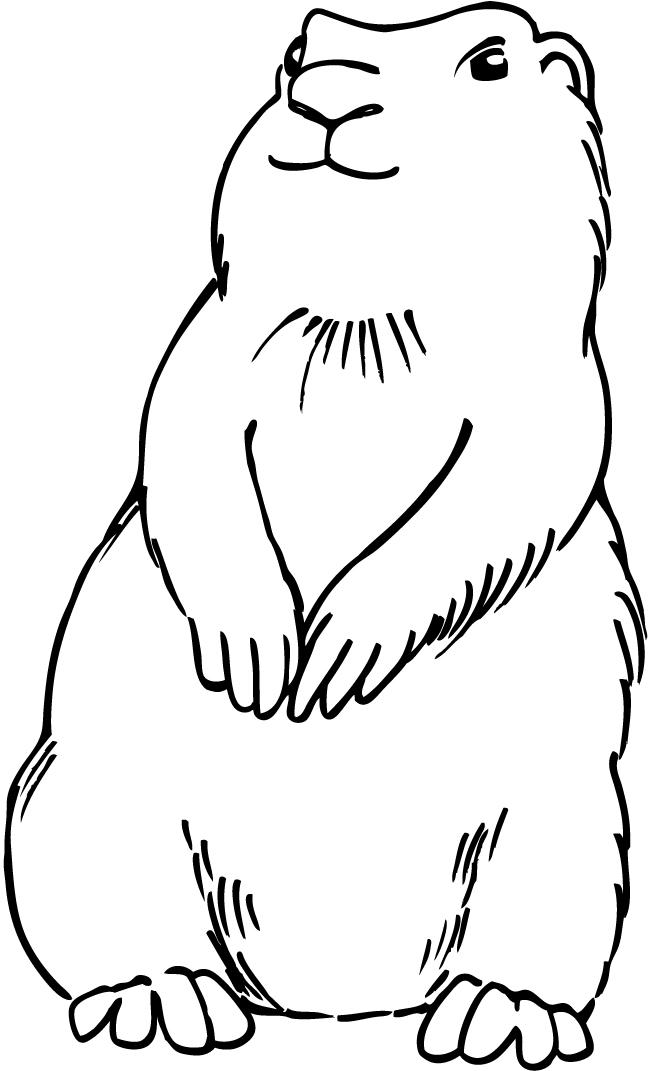 Prairie Dog coloring #9, Download drawings