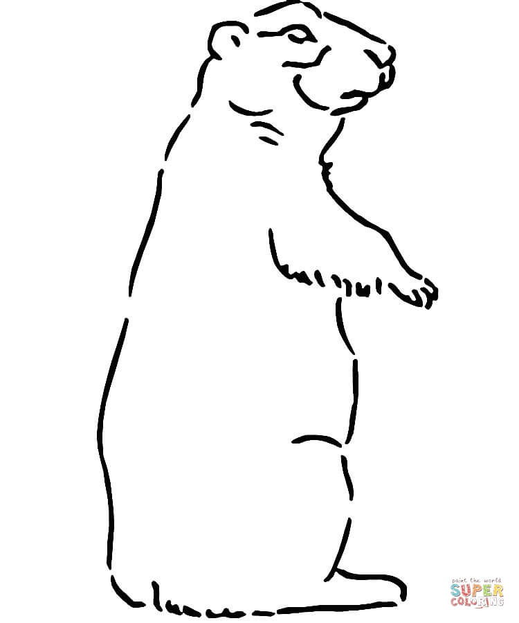 Prairie Dog coloring #10, Download drawings