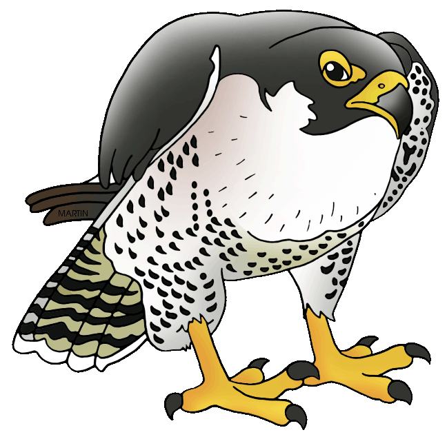 Prairie Falcon clipart #2, Download drawings
