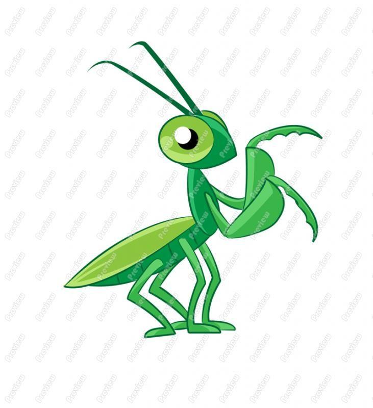 Praying Mantis clipart #1, Download drawings