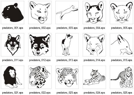 Predator (Animal) clipart #4, Download drawings