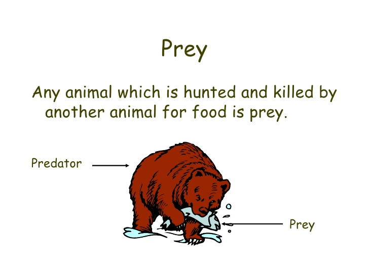 Predator (Animal) clipart #20, Download drawings