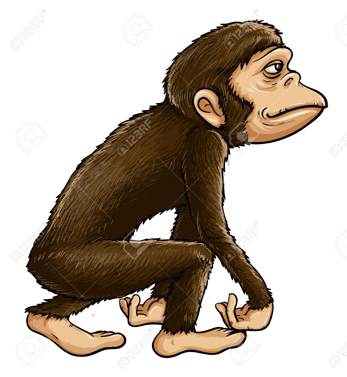 Primate clipart #5, Download drawings