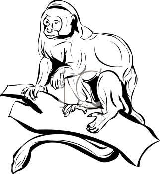 Primate clipart #19, Download drawings