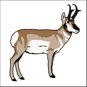 Pronghorn Antelope clipart #6, Download drawings