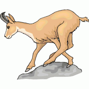 Pronghorn Antelope clipart #9, Download drawings