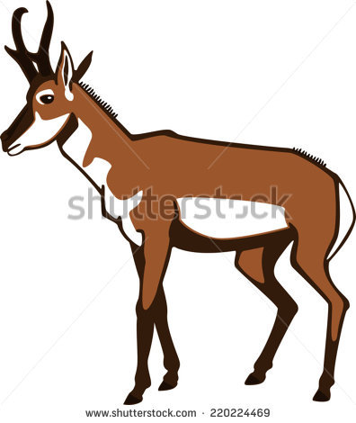 Pronghorn Antelope clipart #1, Download drawings