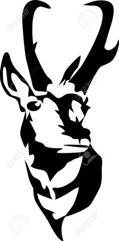Pronghorn Antelope clipart #7, Download drawings