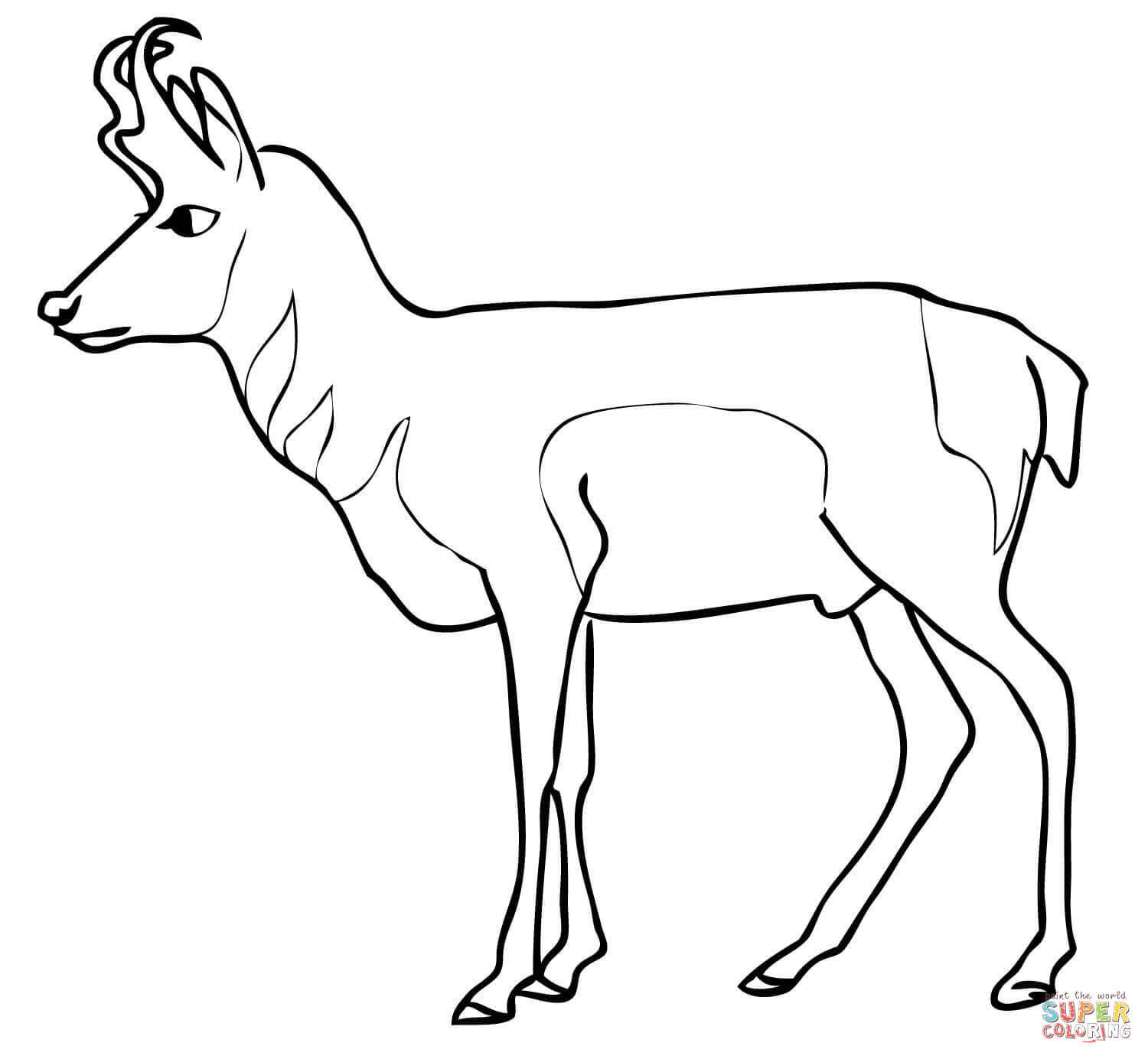 Pronghorn antelope clipart