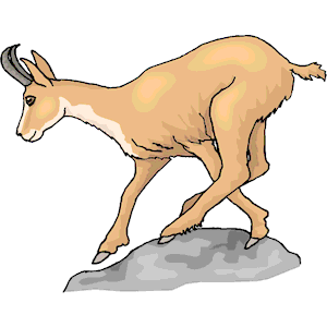 Pronghorns clipart #4, Download drawings
