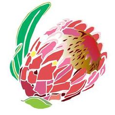 Protea clipart #3, Download drawings