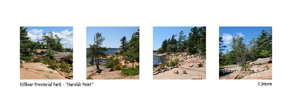 Provincial Park clipart #13, Download drawings
