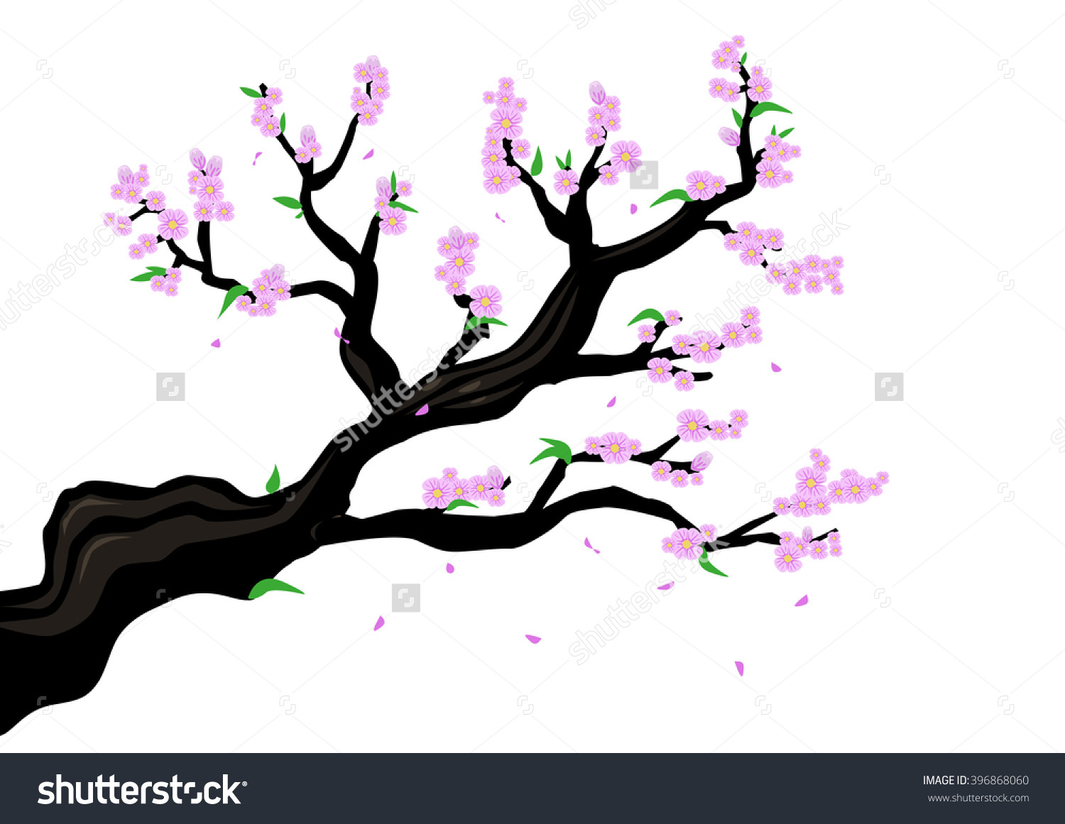 Prunus Blossom clipart #18, Download drawings