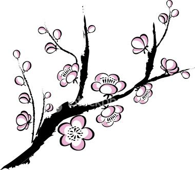 Prunus Blossom clipart #4, Download drawings