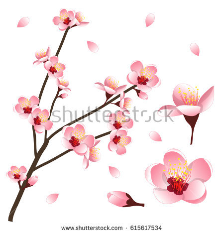 Prunus Blossom clipart #17, Download drawings