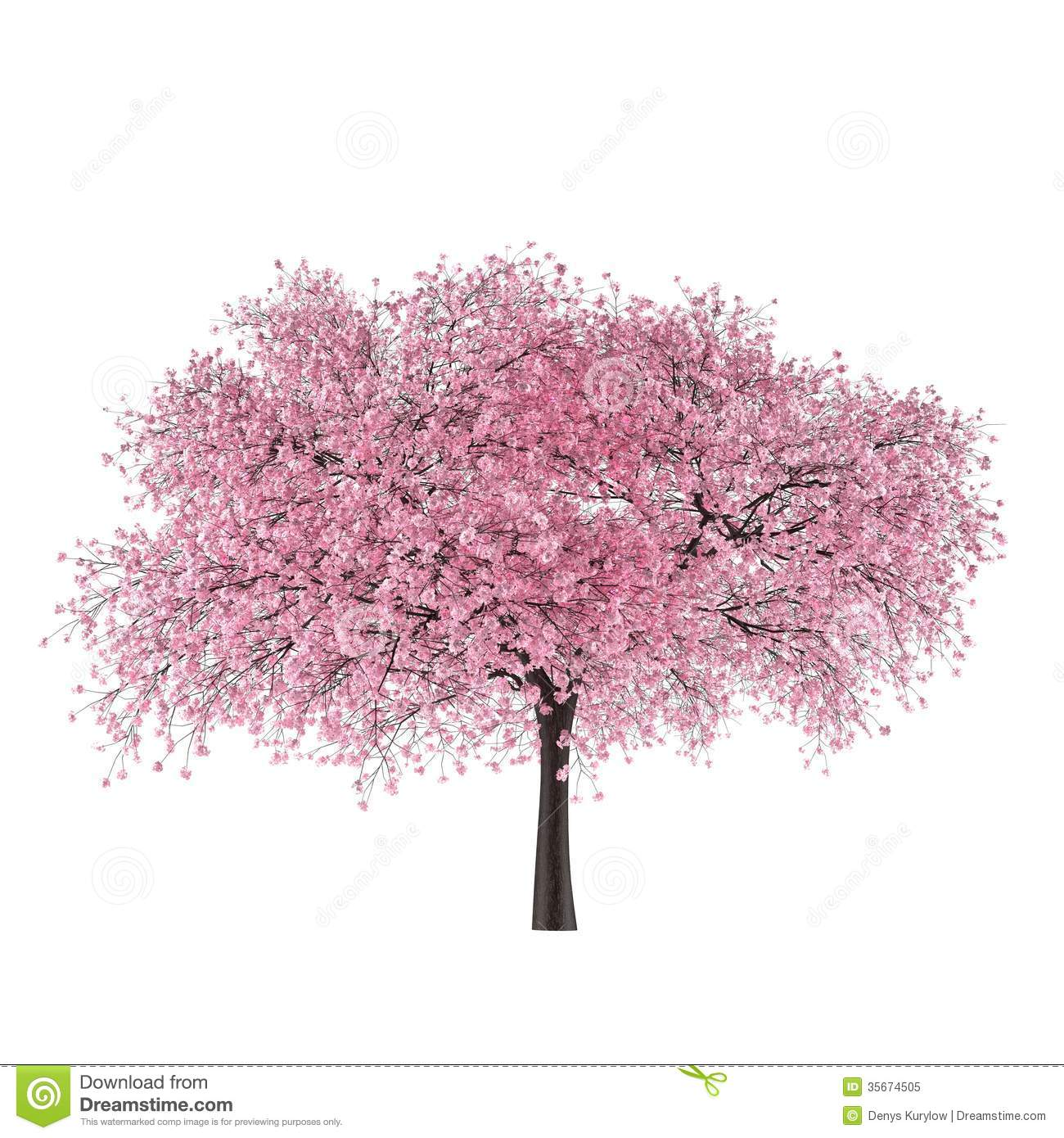Prunus Blossom clipart #16, Download drawings