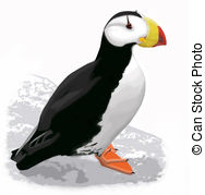 Puffin clipart #12, Download drawings
