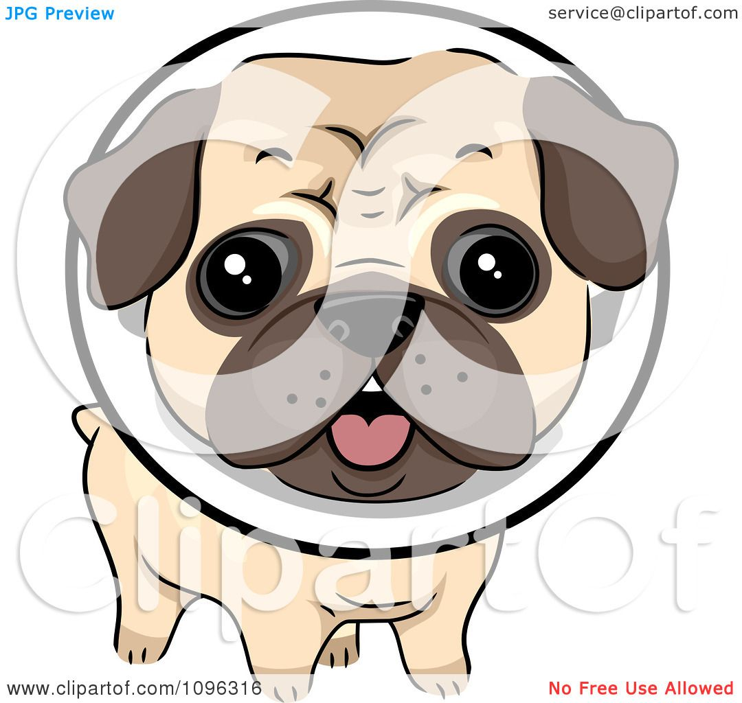 Pug clipart #12, Download drawings