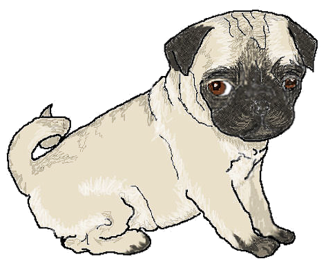 Pug clipart #15, Download drawings