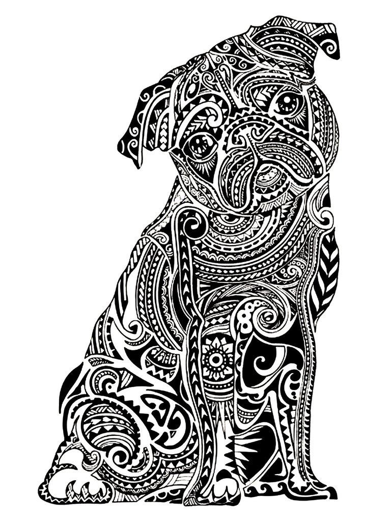 Pug coloring #9, Download drawings
