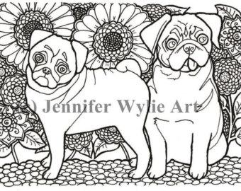 Pug coloring #5, Download drawings