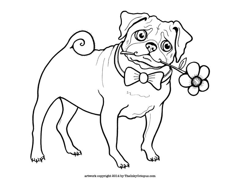 Pug coloring #14, Download drawings