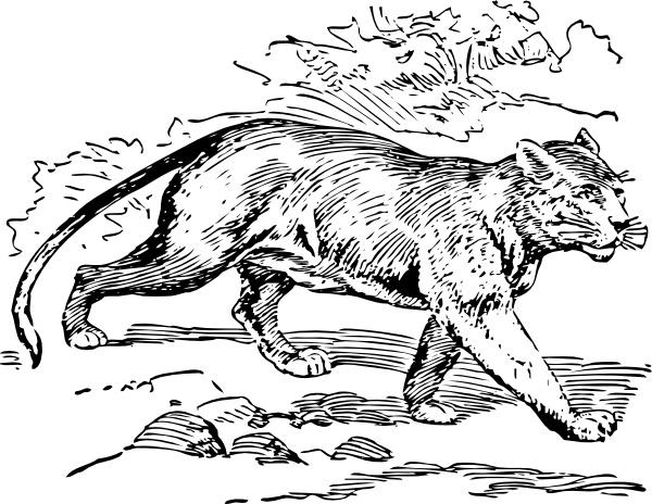 Puma svg #1, Download drawings