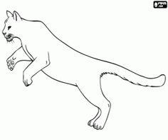 Puma coloring #9, Download drawings