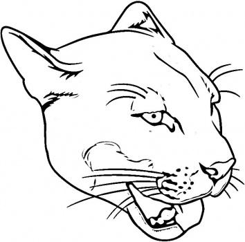 Puma coloring #11, Download drawings