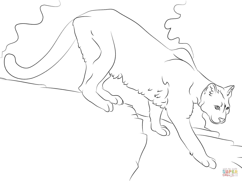 Puma coloring #14, Download drawings