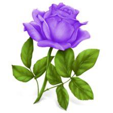 Purple Rose clipart #16, Download drawings