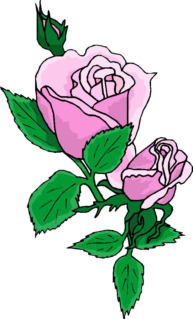 Purple Rose clipart #2, Download drawings