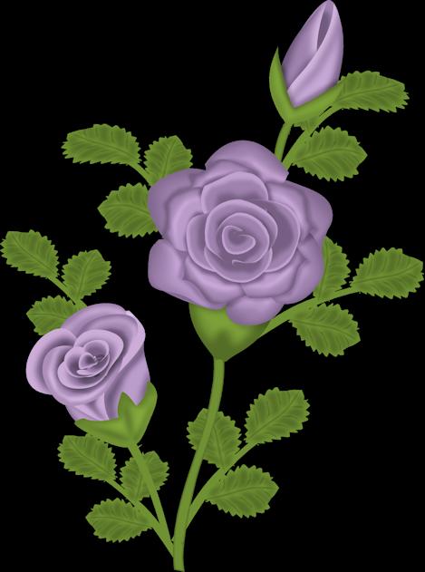 Purple Rose clipart #7, Download drawings