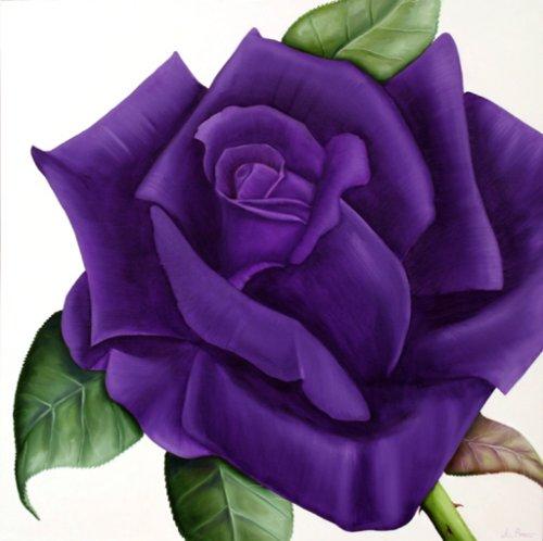 Purple Rose clipart #17, Download drawings