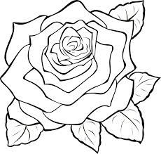 White Rose svg #15, Download drawings