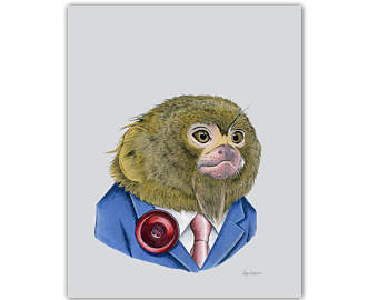 Pygmy Marmoset svg #14, Download drawings