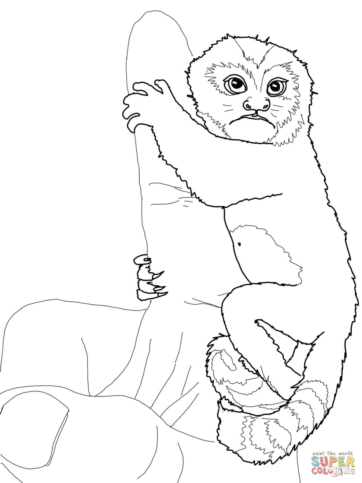 Japanese Macaque coloring #9, Download drawings