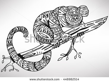 pygmy marmoset coloring pages - photo#11