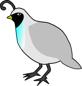 Quail clipart #20, Download drawings
